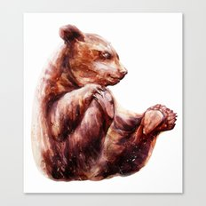 little grizzly bear Canvas Print