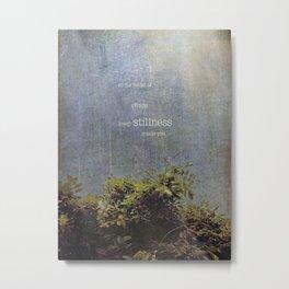 keep stillness inside Metal Print