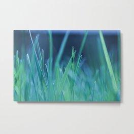 Splender in the grass Metal Print
