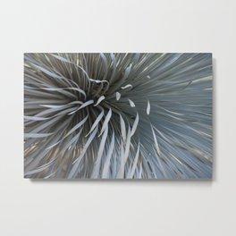 Growing grays Metal Print