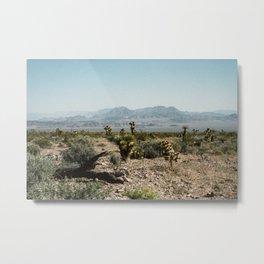 Nevada Desert Scene Metal Print