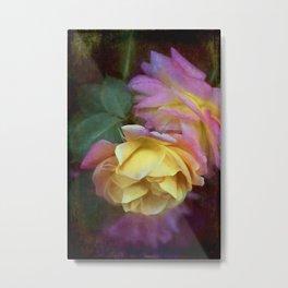Rose 364 Metal Print