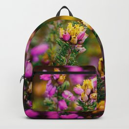 Heather growing in the Peak District Backpack