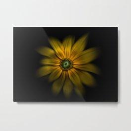 Backyard Flowers 34 Color Flow Version Metal Print