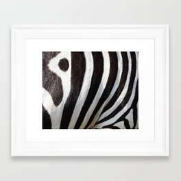 """Pop Safari 01 Zebra"" Framed Art Print"