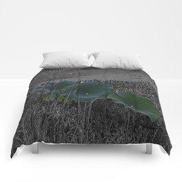 Line-Up Comforters
