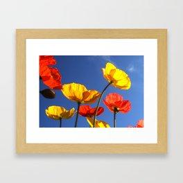 Happy Poppies Framed Art Print