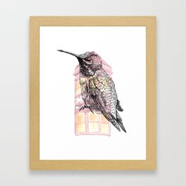 Urban Hummingbird Framed Art Print