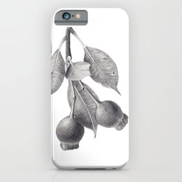 Gumnuts - graphite pencil drawing iPhone Case