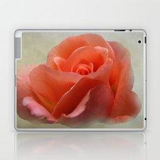Romantic Peachy Rose Floral Laptop & iPad Skin