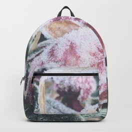 Frosted Backpack
