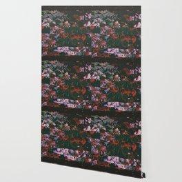 NGMNŁ Wallpaper
