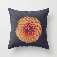 Curtain Pattern 02 Throw Pillow