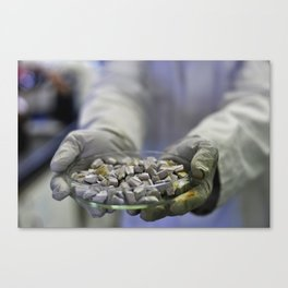 A plate of sodium Canvas Print