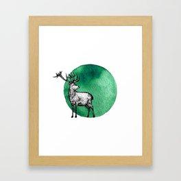 The Animal Kingdom Collection vol.6 Framed Art Print