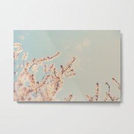 spring is in bloom ...  Metal Print