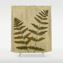 Ferns by Kathy Morton Stanion Shower Curtain