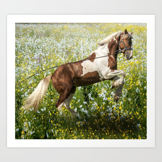 Gypsy Meadow Art Print