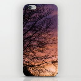 Sunsets and Silhouettes #1 iPhone Skin