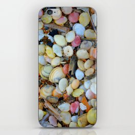 Colorful Shells iPhone Skin