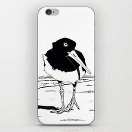 American Oystercatcher iPhone Skin