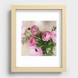Pink Ranunculus Recessed Framed Print