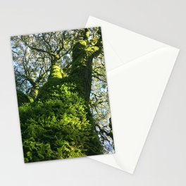 Trees! Castle Rock State Park - California Stationery Cards