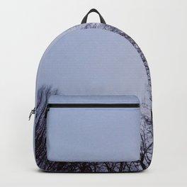 Nature and landscape 2 Backpack