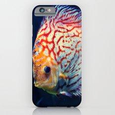 Dzuko iPhone 6s Slim Case