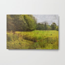Bottom of the Meadow 2 Metal Print