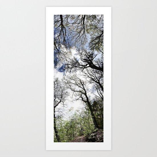 Vertical Trees Art Print