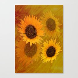 Satin filled Sunflowers Canvas Print