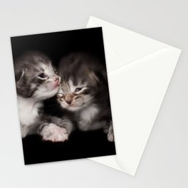 Two kitten brothers Stationery Cards