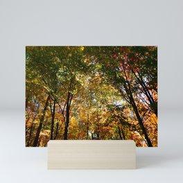 Through the Trees in October Mini Art Print