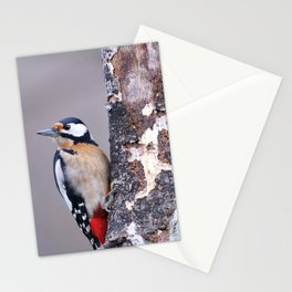 Two great spotted woodpecker perched. Stationery Cards
