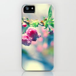 Flowers in the window 02 iPhone Case