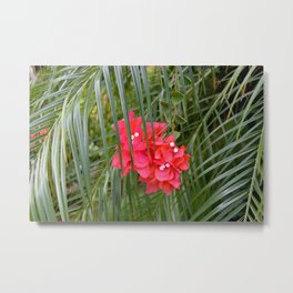 Tropical flower with palm tree branches Metal Print