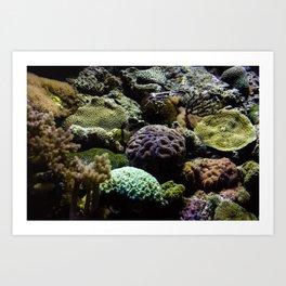 Sea Bed #3 Art Print