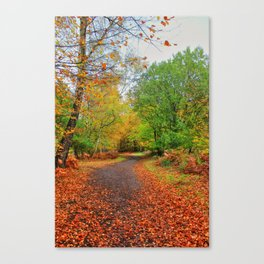 Autumn Dream Canvas Print