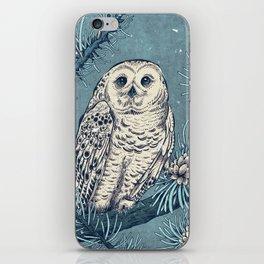 Winter Snowy Owl iPhone Skin