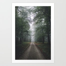 Autumn Forest Walk Art Print