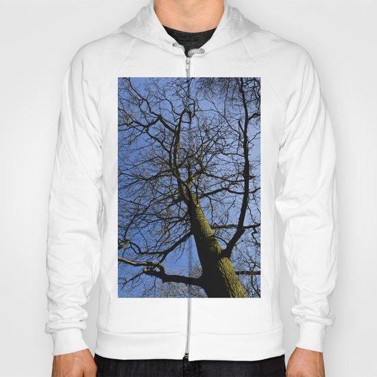 Wild Wood Tree Hoody