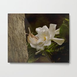 The Scent of the Gardenia Metal Print