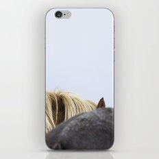 Icelandic Horses iPhone & iPod Skin