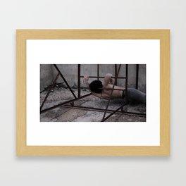 skin 002 Framed Art Print