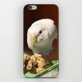 volo iPhone Skin
