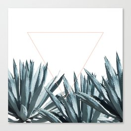 Agave Triangle Canvas Print