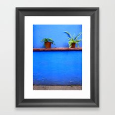 Standing sentry at La Casa Azul Framed Art Print