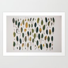 Shades of Sage Collection Photo by Jackie Dives Art Print