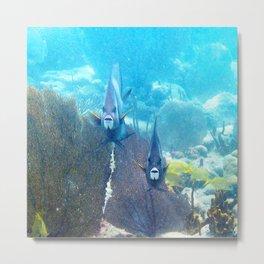 Watercolor Fish, Gray Angelfish 01, St John, USVI, Two's Company Metal Print